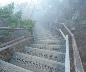 pale, fog, and stairs image