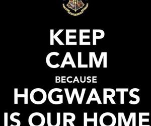 boy, cool, and hogwarts image
