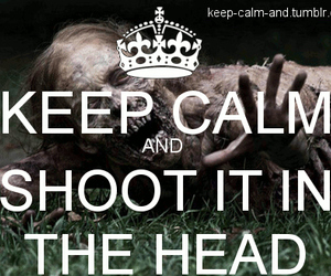 keep calm and shoot image
