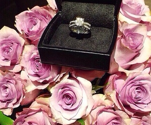 ring, roses, and wedding image