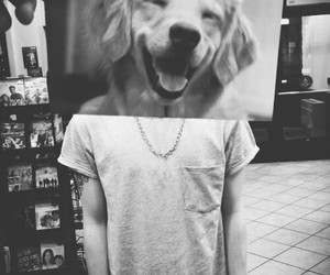 dog, boy, and funny image