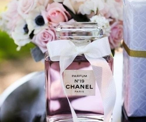 chanel, parfum, and rose image
