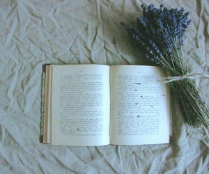 book and lavender image