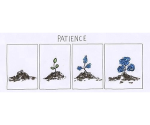 patience, flowers, and life image