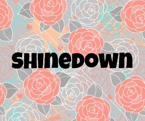 classic, music, and shinedown image