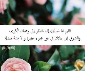 amin and يارب image