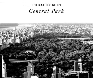 black and white, Central Park, and edit image
