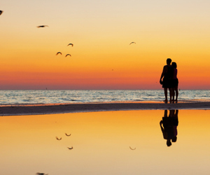 love, beach, and birds image