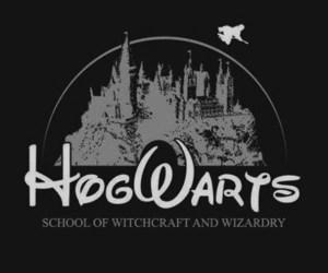 hogwarts, harry potter, and disney image