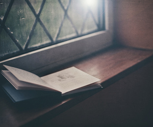 book, reading, and light image