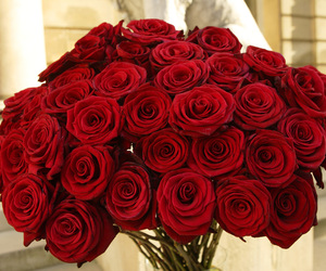bouquet, red roses, and rose image