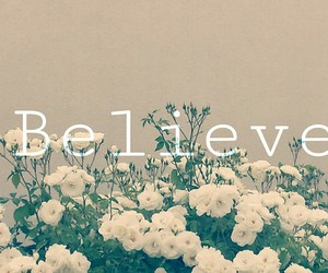 believe, flowers, and nature image