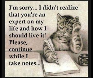 life, quote, and cat image