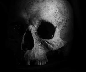 horror, skull, and black and white image