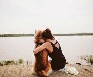 animals, vintage, and dog image