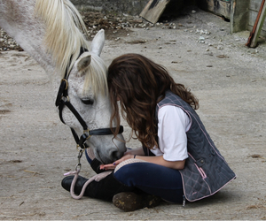 best friend, equestrian, and forever image