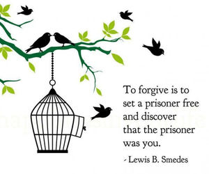 quote, bird, and forgive image