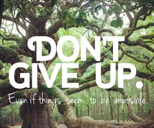 don't give up, give, and green image
