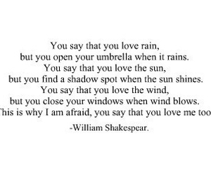 love, rain, and quotes image