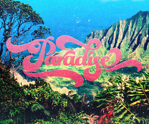 paradise, summer, and pink image