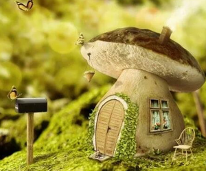 mushroom, butterfly, and house image