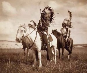 indian, horse, and native american image