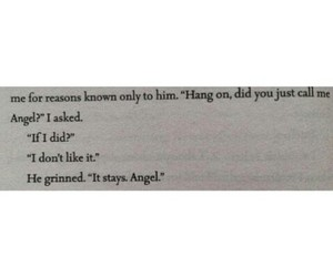 angel, in love, and hush hush image