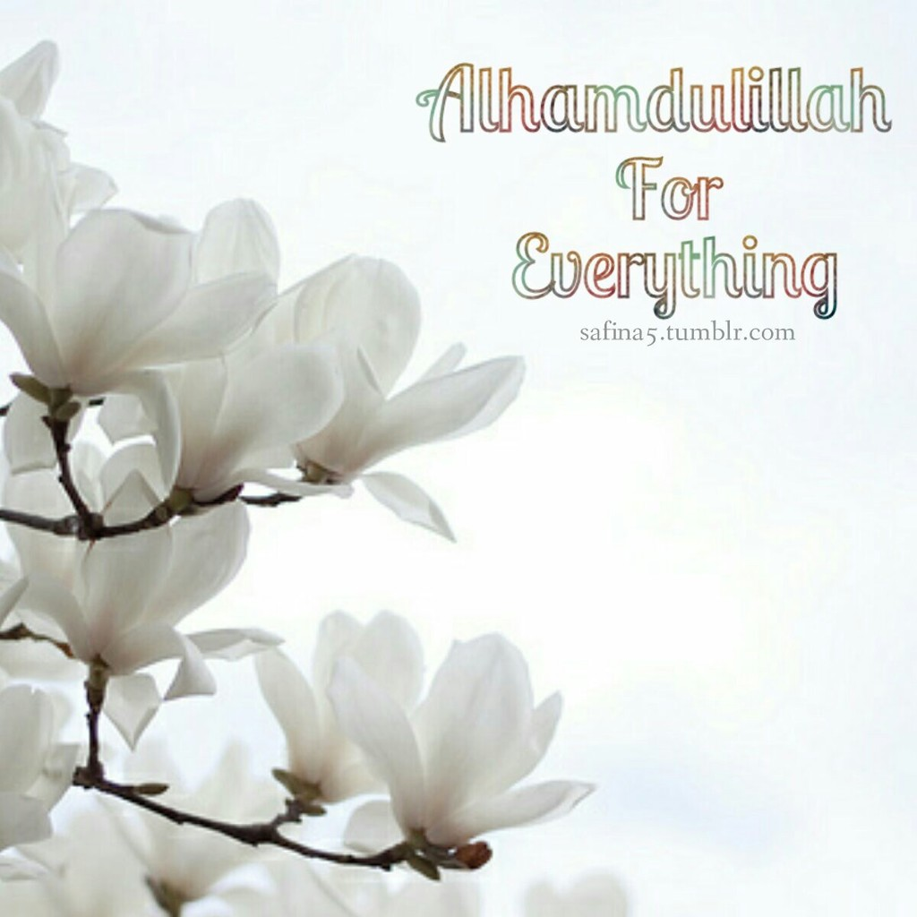 Alhamdulillah For Everything Uploaded By Safina5