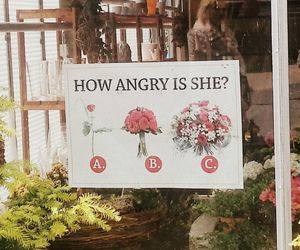 love, flower, and funny image