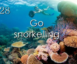 wish, snorkelling, and bucket list image