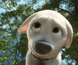 bolt, dog, and cute image