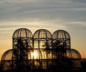 park, sun, and sunset image