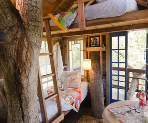 treehouse and bedroom image