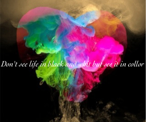 collor, life, and live image