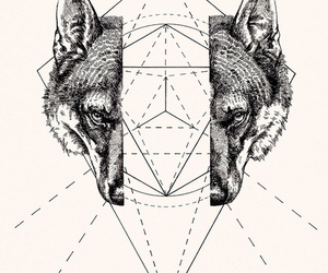 black and white, triangle, and fox image