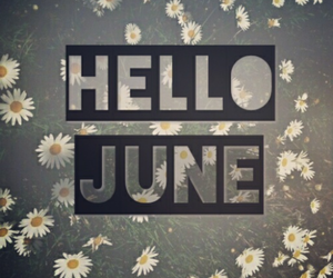 flower, hello, and june image