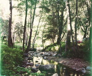 camping, water, and creek image