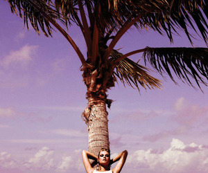 beach, summer, and palm tree image