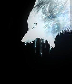 Bleu, wolf, and white wolf image