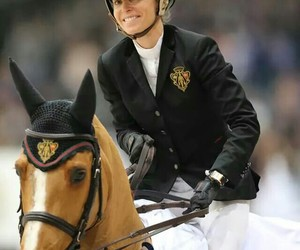 equestrian, equine, and showjumping image
