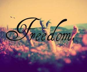 freedom, free, and flowers image