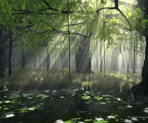 beautiful, pond, and forest image