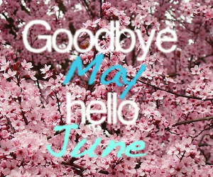 june, hello, and may image