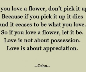 flower, quotes, and love image