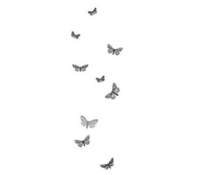 butterflies, fly away, and overlay transparent image