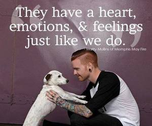 memphis may fire and matty mullins image