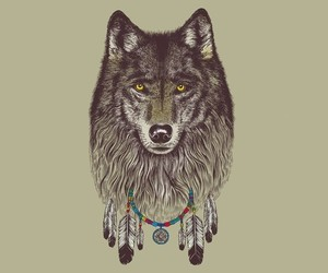 Dream, wolf, and catcher image
