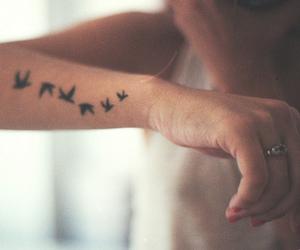 arms, bird, and tatto image
