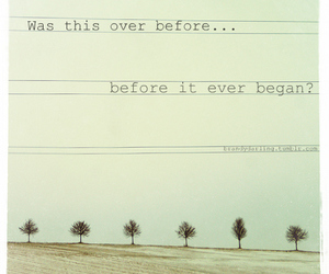 anberlin, trees, and tumblr image