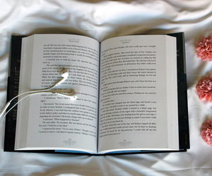 bed, book, and daisys image